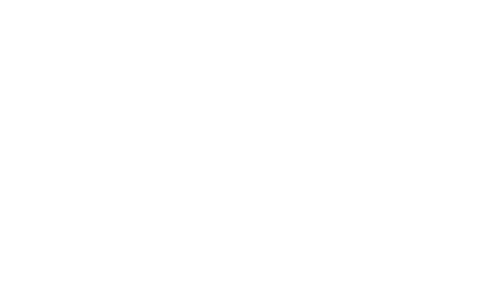 work_02_wirral_logo1